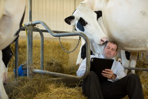 Dairy Farm Protection Insurance Program